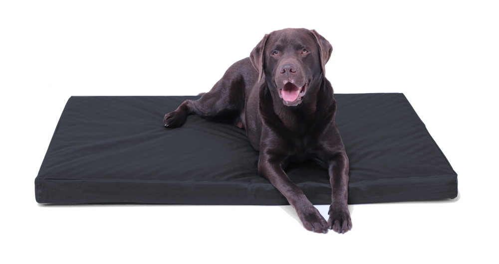 Hundekissen schwarz gesteppt 120 x 80 cm, rutschfest, Memory Foam